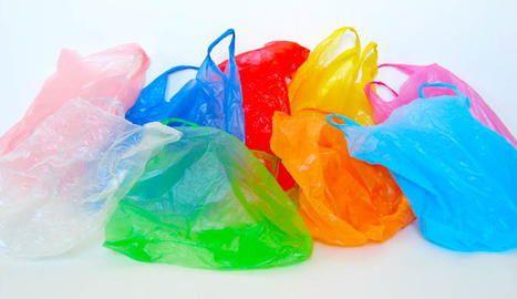Bolsas hechas de aceites vegetales y almidón, opción para sustituir plástico