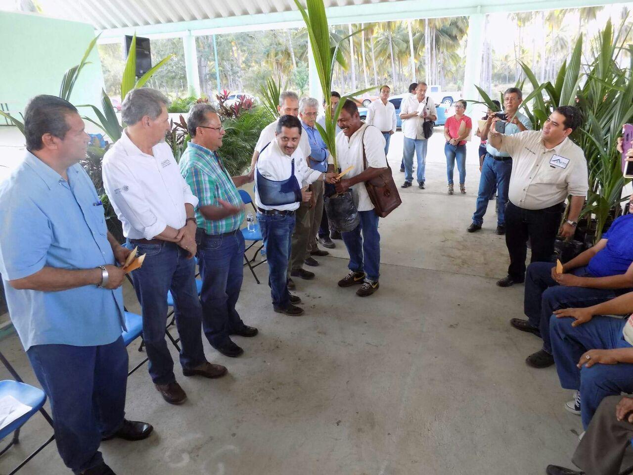 Entregan palmas de coco y apoyos económicos a campesinos de Coyuca de Benítez