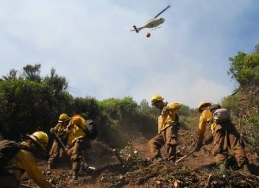 Controlan al 100 por ciento incendio forestal en zona alta de Texcoco