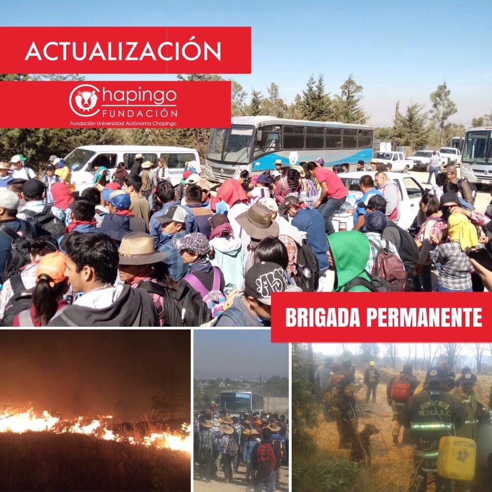 ¿En Texcoco ecocidio con olor a sangre y tintes políticos?