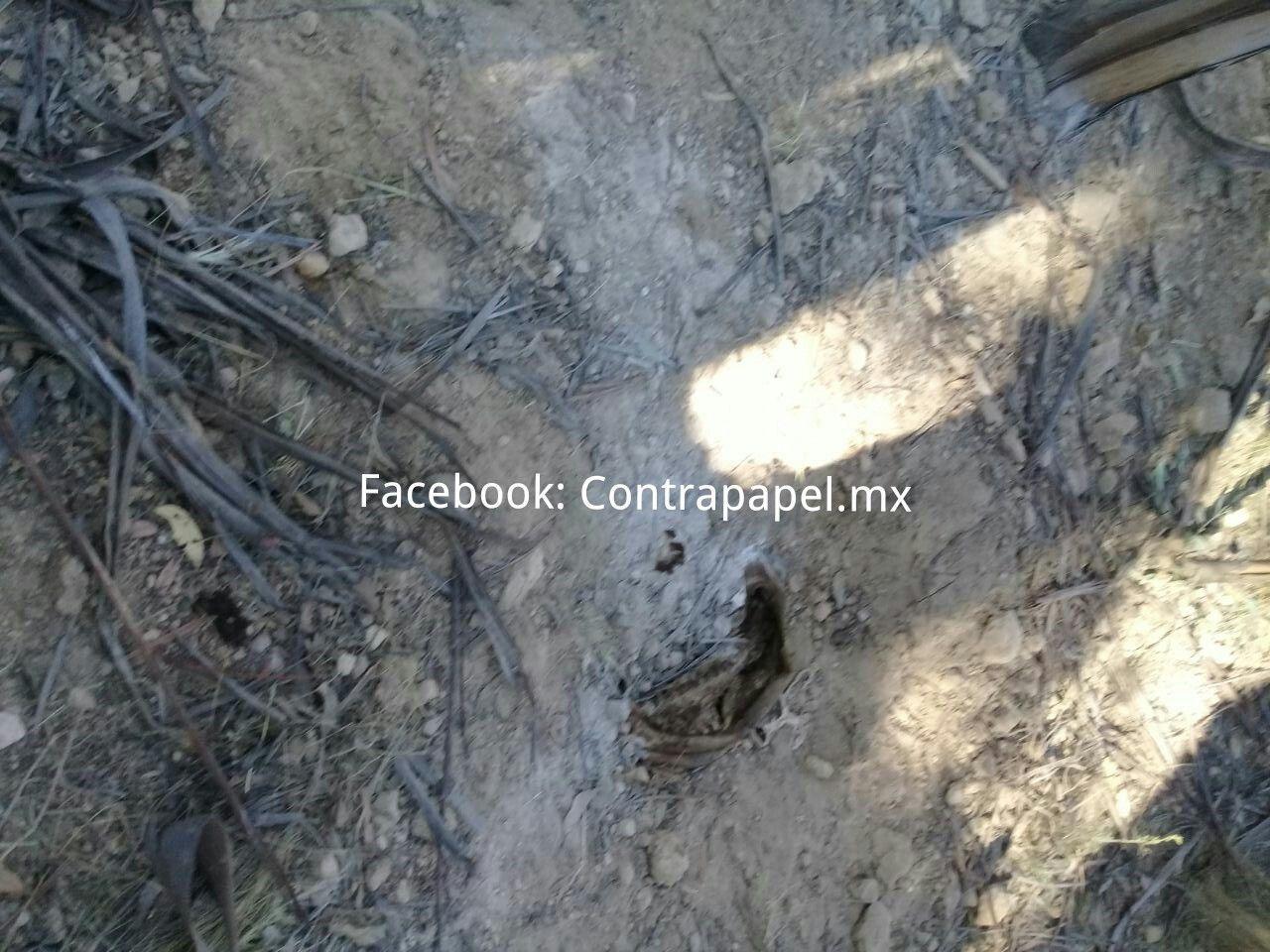 Identifican cadáveres hallados en fosa clandestina de Tepetlaoxtoc; FGJEM atrae investigación