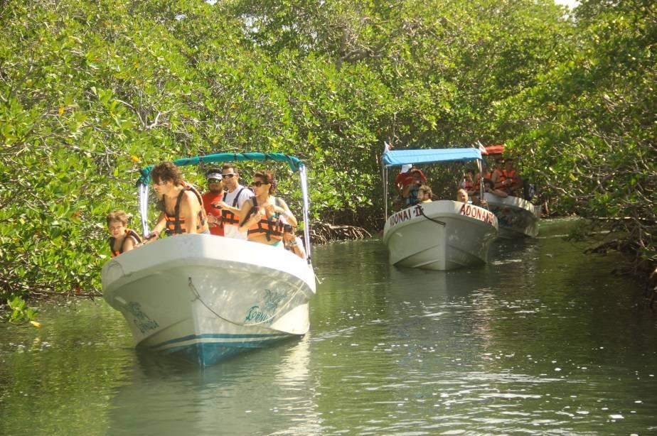 Acaban con manglares (SOS)
